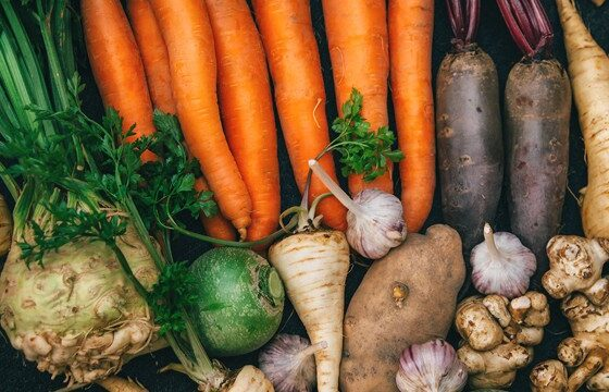 list-of-healthiest-root-vegetables-that-you-should-add-in-your-daily-nutrition-