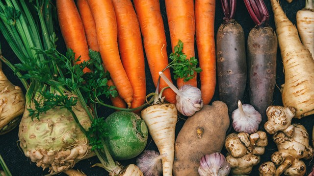 List of Healthiest Root Vegetables that you should add in your daily Nutrition!