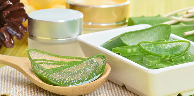 Healthy Benefits of Drinking Aloe Vera Juice