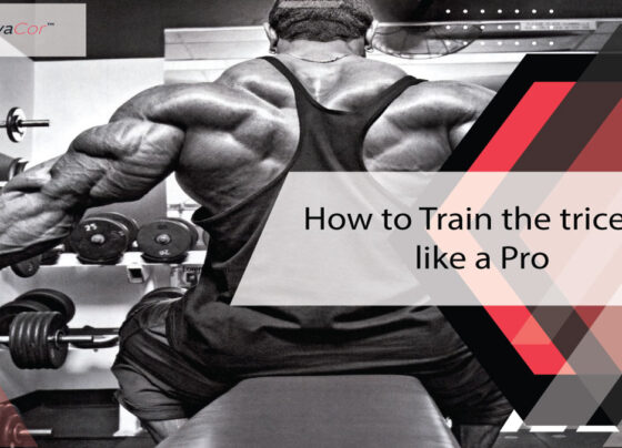 how-to-train-the-triceps-like-a-pro