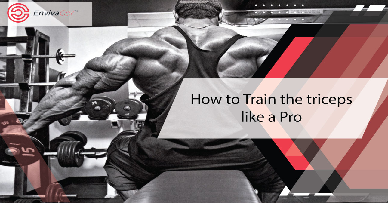 How to Training the triceps like a Pro !