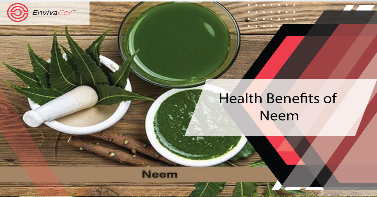 What are the Health Benefits of Neem
