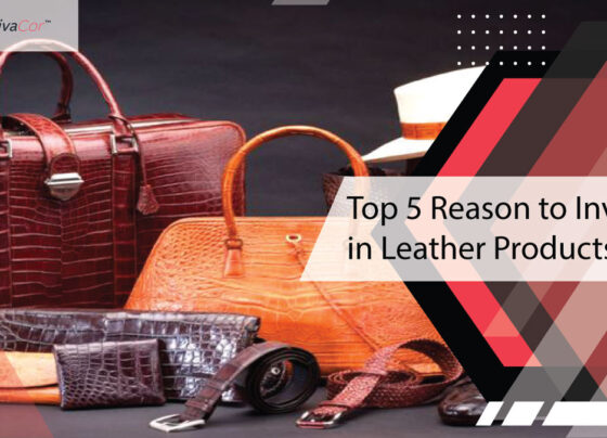 top-5-reason-to-invest-in-leather-products