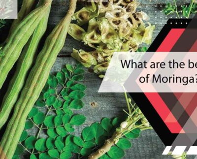 what-are-the-benefits-of-moringa