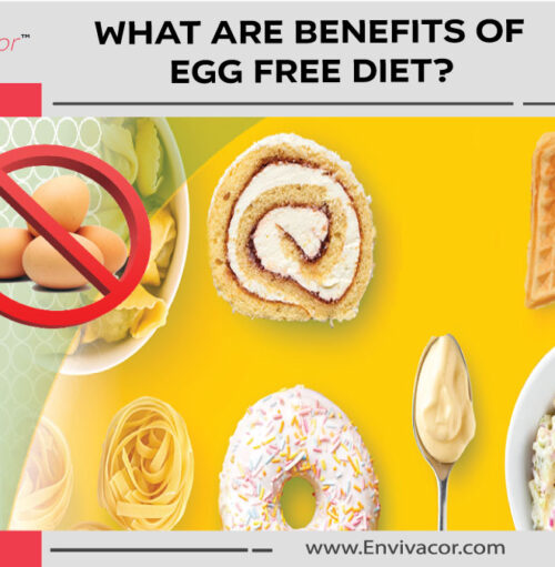 what-are-benefits-of-egg-free-diet