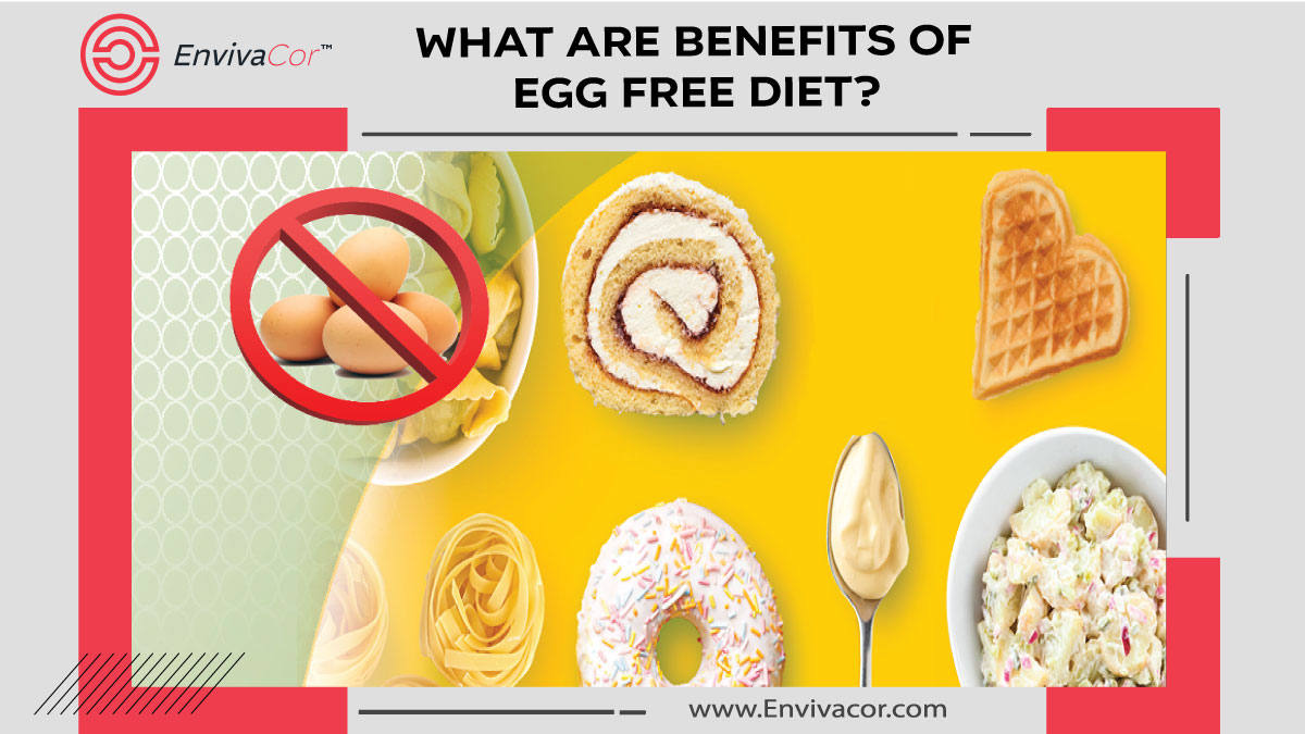 What are Benefits of egg free Diet?