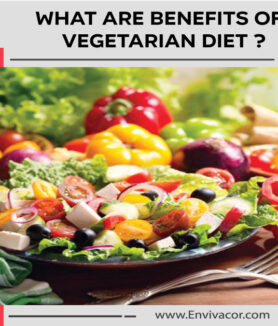 what-are-benefits-of-vegetarian-diet