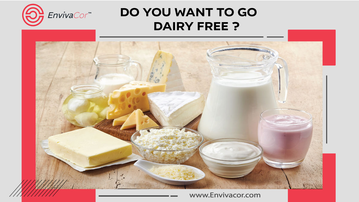 Do You Want to Go Dairy Free?